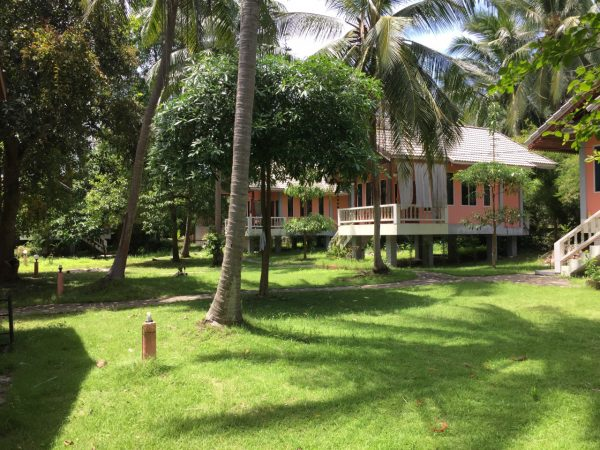 Resort Near Beach-Business-Hin Kong-koh-phangan-real-estate-development-investment-program-thailand-construction-building-villa-house-for-rent-for-sale-business-lease-hold