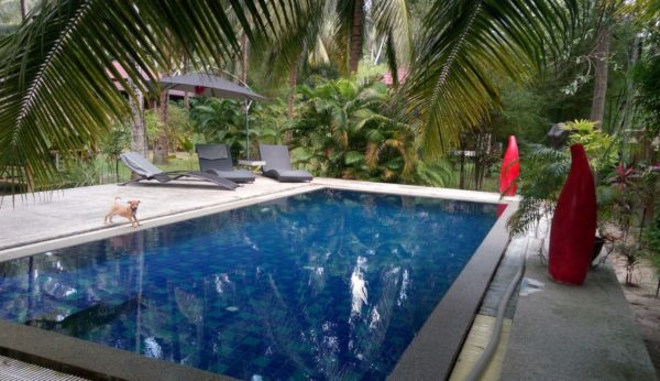 Peaceful 4 Villas Residence -Business-Chalok Ban Kao-koh-phangan-real-estate-development-investment-program-thailand-construction-building-villa-house-for-rent-for-sale-business-lease-hold