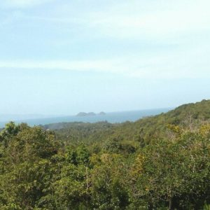 1 Rai With Nice Seaview -Land-Srithanu-koh-phangan-real-estate-development-investment-program-thailand-construction-building-villa-house-for-rent-for-sale-business-lease-hold