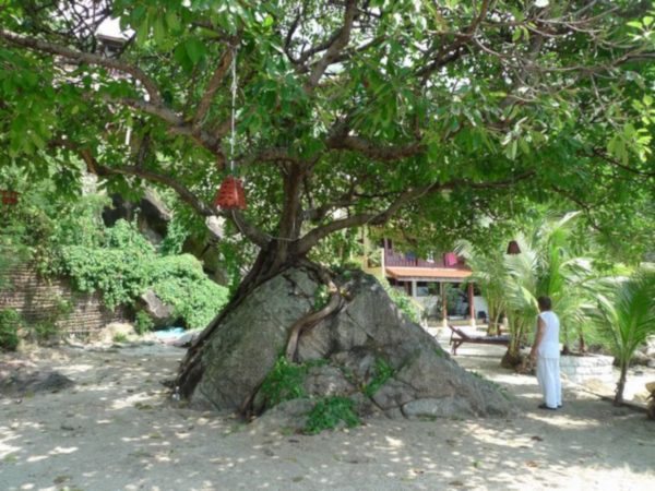 Resort With Private Beach-Business-Haad Yao-koh-phangan-real-estate-development-investment-program-thailand-construction-building-villa-house-for-rent-for-sale-business-lease-hold