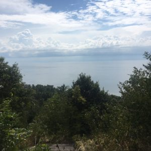 5 Rai With Superb Seaview-Land-Haad Thian-koh-phangan-real-estate-development-investment-program-thailand-construction-building-villa-house-for-rent-for-sale-business-lease-hold
