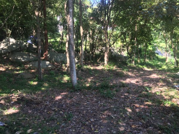 Phangan Development land for sale-1.788 sqm Land with Small Seaview - Baan Kai-koh-phangan-real-estate-development-investment-program-thailand-construction-building-villa-house-for-rent-for-sale-business-lease-hold