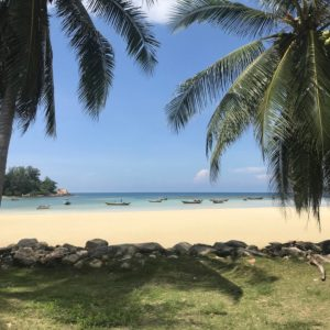 Phangan Development land for sale-Wonderful Beachfront Land - Chaloklum-koh-phangan-real-estate-development-investment-program-thailand-construction-building-villa-house-for-rent-for-sale-business-lease-hold